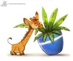 Pygmy Giraffe:
