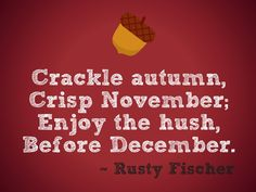 Image result for happy november sayings