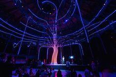 Arboreal Lightning – Londres  Arboreal Lighting est une oeuvre interactive réalisée à l'occasion du Festival of Contemporary Classical Music qui s'est déroulé au Roundhouse de Londres (Royaume-Uni). Réalisé par Atmos Studios cet arbre en Led réagit avec le son et les mouvements du public.