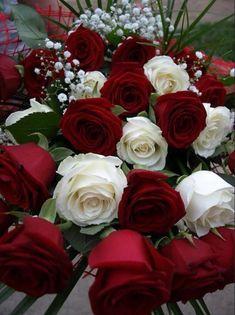 Bouquet of roses Very Beautiful Flowers, Beautiful Flowers Pictures, Beautiful Flowers Wallpapers, Beautiful Flower Arrangements, Flower Pictures, Amazing Flowers, Love Rose Flower, Pretty Flowers, Rose Flower Wallpaper