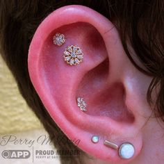 """""""Rachel came and conquered yesterday. She claimed two new ear piercings with a gold """"Rosette,"""" by @bvla, and a gold flower by @anatometalinc, and jazzed…"""""""