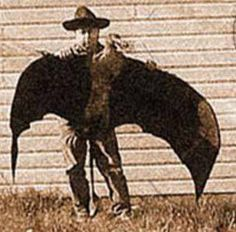Pteranodon pic during the civil war - Google Search