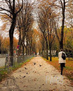 تعلمت من الحياة ان الاصدقاء كأوراق الخريف    #قطر #الوكرة #الدوحة #فرنسا #شتاء #جميل #الخريف #باريس #Qatar #Doha #alwakrah #2015 #October #Friends #fun #usa #ich #wheelchair #Handicap #Germany #France #Paris #Fritzlar #Hessen #kassel #autumn #badwildungen #Children #snow #Winter by abdalluh_ib_alashiri Eiffel_Tower #France