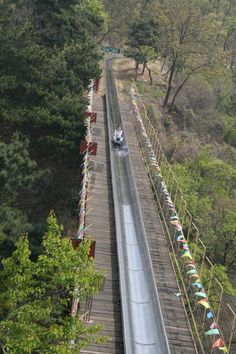Sure everyone goes to see the Great Wall of China, but going to the Mutianyu section you get the bonus of toboggan ride down from the wall.