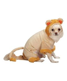 Fido can look absolutely fetching during fall festivities with this cutie costume. Featuring a light-hearted lion design along with a comfortable hook-and-loop closure, it's the perfect way for a pampered pooch to pep up a party.