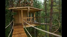 Great Tree Houses from the search.. this is one of the simpler looking designs ! I would love to build a livable tree house wired and water tight to just hang out in with the kids, write a book or just enjoy the beauty... just awesome...