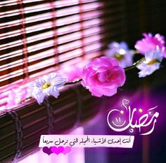 Oh Allah💕don't let our heart loose the road after You guided us to the right path 💕 Oh Allah, Islamic Pictures, Arabic Quotes, Beautiful Words, Ramadan, Crafts For Kids, Projects To Try, Neon Signs, Instagram Posts