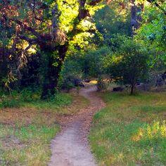 Santa Rosa Plateau hike