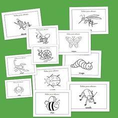 Fichas de insectos y bichos para colorear. Aprende los insectos que viven cerca de ti, colorearlos y sobre todo ¡Ten cuidado con ellos! Spanish, Bullet Journal, Ten, Math, Holiday Decor, Ideas Para, Montessori, Spring, Animals