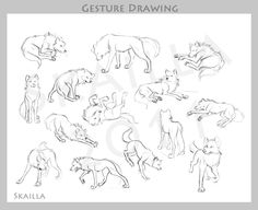 Gesture Drawing by Skailla.deviantart.com on @DeviantArt