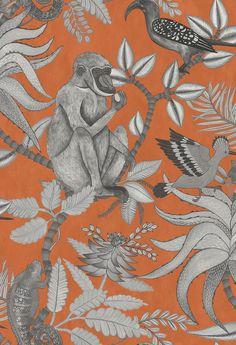 Cole & Son Savuti Orange Wallpaper main image