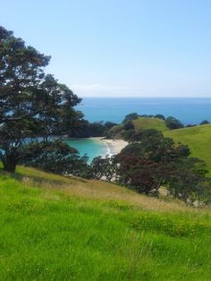 Whananaki New Zealand