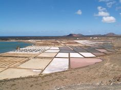 Las Salinas Janubio, Lanzarote, Las Islas Canarias (the Canary Islands), Spain