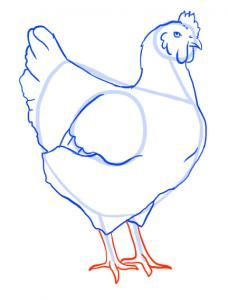 how to draw a chicken step 8