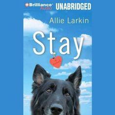 Audio Adventures: Stay by Allie Larkin