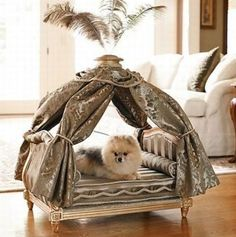 36 Awesome Dog Beds For Indoors And Outdoors | DigsDigs Hanging Chair, Backpacks, Bags, Furniture, Home Decor, Fashion, Leather Backpack, Ideas, Diy Dog