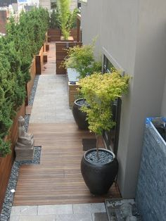 Even narrow outdoor spaces could look beautiful.
