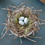 http://www.lilacsandlonghorns.com/best-of-diy-party-twiggy-birds-nest.html