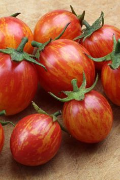Tomato Pink Bumblebee. Taking the organic and farmers markets of the US by storm, Pink Bumble Bee and its relatives from the 'Artisan Tomato' stables are the next big thing in open-pollinated tomatoes.