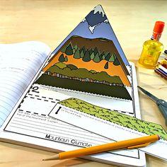 Interactive Notebook Activities