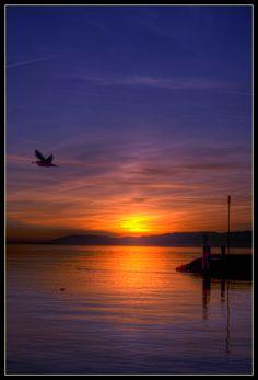 ✯A beautiful sunset