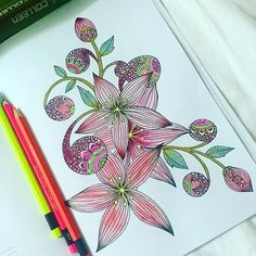 Be red #coloring #colouring #colorful #colors #valentinaharper #colorpainting #coloringaddict #coloringflowers #coloringbook #colorpencils #watercolorpencils #colleencoloredpencils #kuelox #neoncolors #colortherapy #adultcoloringbook #adultcoloring