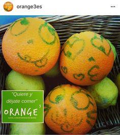 Cantaloupe, Orange, Food, Fruit, Essen, Meals, Yemek, Eten
