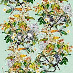 Robins & Rock Daisies II (55cm) Robins, Limited Edition Prints, Daisies, Watercolor Paintings, Digital Prints, Cool Art, Flora, Vibrant, Birds