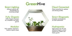GreenHive hydroponics http://robonica.it/