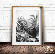 Schwarz-weiß Palm Tree Grafik, tropischen Grafik, Palm Tree Print, Palmblätter, Fächerpalme, schwarz-weiß-Foto, Blätter drucken, druckbare Kunst