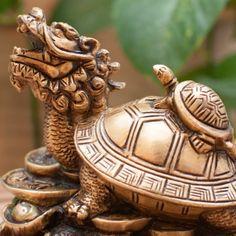 Drachenschildkröte, Messing