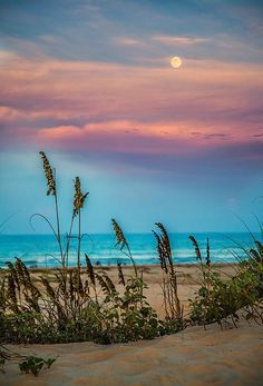 """The Moon And The Sunset"" - South Padre Island. Such a cotton-candy sky over the beach Beautiful Sunset, Beautiful Beaches, Beautiful World, The Beach, Sunset Beach, Beach Sunset Images, Blue Sunset, Sunset Pictures, Ocean Beach"