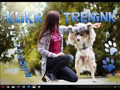 Veronica, Youtube, Animals, Stickers, Instagram, Animales, Animaux, Animal, Animais