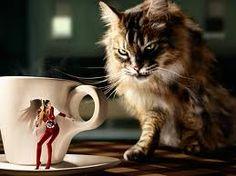 Eugenio Recuenco for Lavazza Lavazza Coffee Machine, Cappuccino Machine, Funniest Pictures Ever, Funny Cat Pictures, Funny Photoshop, Photoshop Photos, Tarot, Videos Funny, Photo Manipulation
