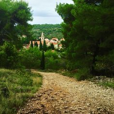 Car-free Zlarin is the perfect place to escape to from Sibenik. Serene walks with just the butterflies for company, a 30min crossing from Sibenik.