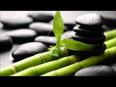 Meditation - Healing - Relaxation (Chinese Bamboo Flute Music - Sounds Of Nature)