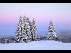 Μερομήνια 2020-2021 - Βαρυχειμωνιά και χιόνια τα Χριστούγεννα - YouTube Nymph, Make You Smile, Winter Wonderland, Aesthetic Wallpapers, Snow, Nature, Outdoor, Christian, Icons