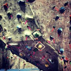 (at MetroRock Indoor Climbing) Indoor Climbing, Climbing Wall, Rock Climbing, Climbing Holds, Bouldering, City Photo, The Outsiders, Climbing, Top Roping