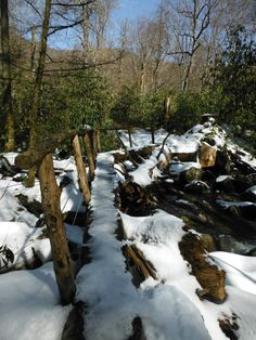 Snow-covered Footbridge on Ramsey Cascades Trail--Great Smoky Mountains National Park