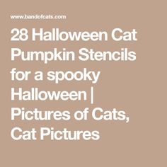 28 Halloween Cat Pumpkin Stencils for a spooky Halloween | Pictures of Cats, Cat Pictures