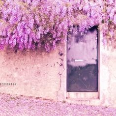 I want my future home to have a door like this. Greeted by the smell of happiness every day...