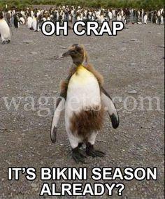 Oh, crap! It's bikini season already?