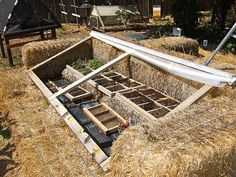 straw bale seedling coldframe thingy. Good idea.