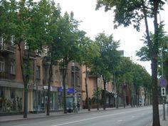 Alis Apartment, H.Manto g. 5-13