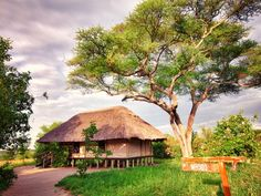 Tarangire River Camp | Holidays in Tanzania | Mbali Mbali Lodges and Camps