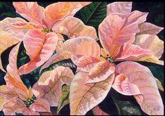 colleen sanchez watercolors - Google Search