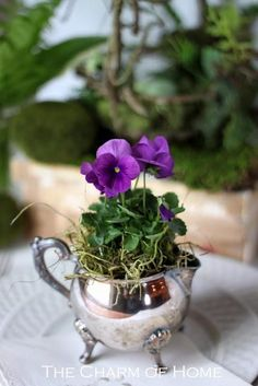 These are cute for tables centerpieces... We can buy old tea sets or containers and fill them with plantable flowers...great take home gift.