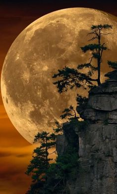 Can This Photo by Peter Lik Possibly Be Real?-Can this Photo by Peter Lik Possibly be Real? Peter Lik, whom many believe is the world& most … - Beautiful Nature Wallpaper, Beautiful Landscapes, Most Beautiful Paintings, Moon Photography, Landscape Photography, Peter Lik Photography, Shoot The Moon, Moon Art, Moon Moon