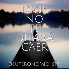 #Dios no te dejara caer (Dt 31:6) #Biblia