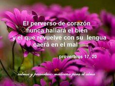 El quedarnos con nuestros propios consejos sin atender los de Dios,nos lleva ala deriva.